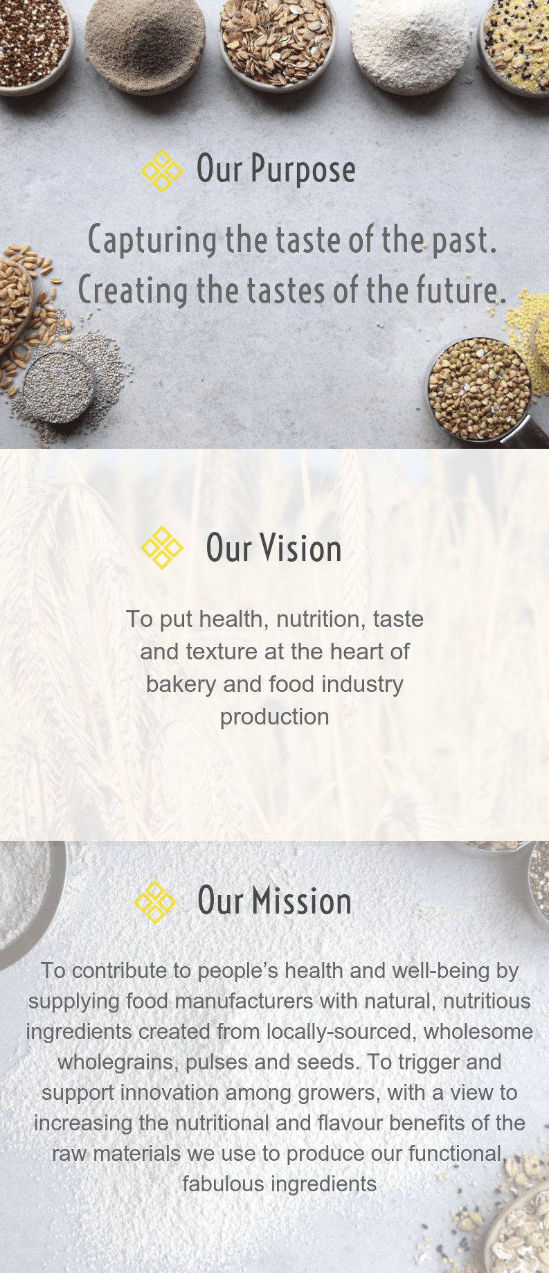 EDME - Values - Introduction, Vision, Mission, Purpose
