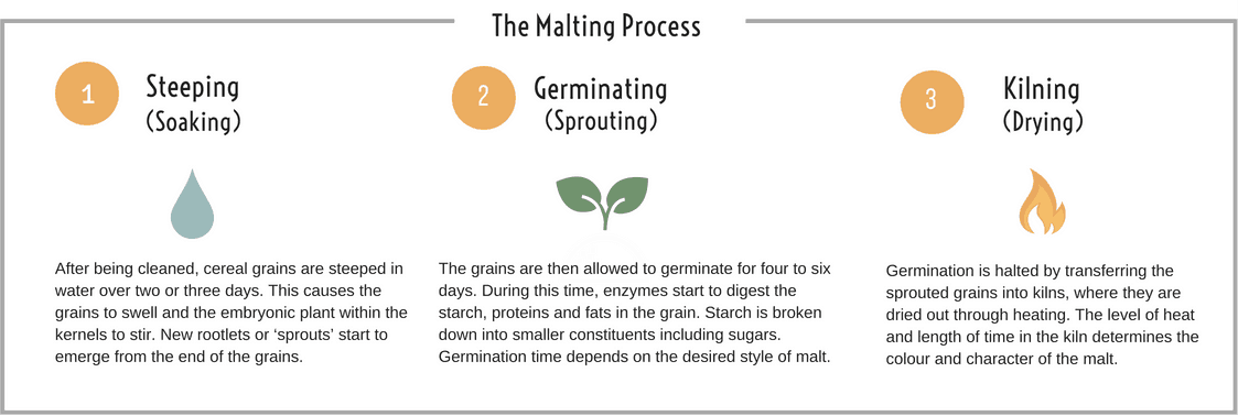 EDME - The Malting Process